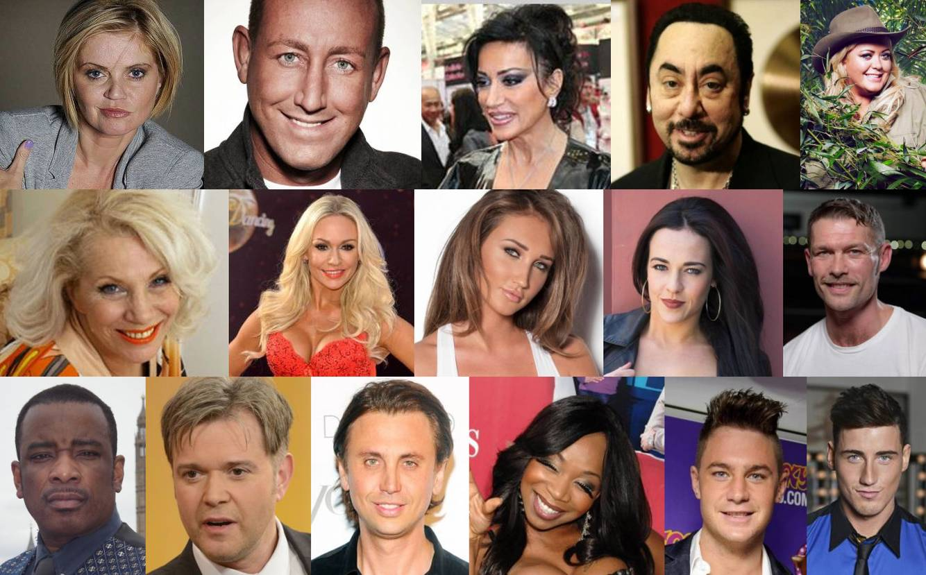Celebrity Big Brother (UK series 17) - Wikipedia