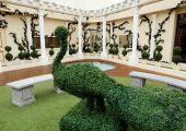 Celebrity_Big_Brother_2014_-_CBB13_-_House_-_Hedge_Sculpture.jpg