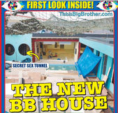 BB8-house-1-Daily-Star.jpg